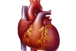 Болезни сердца как причина боли в грудине