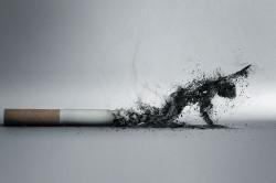 Курение родителей - причина инсульта у ребенка