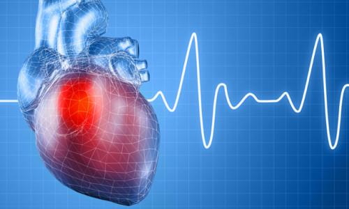 Мерцательная аритмия сердца: лечение народными средствами