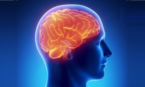 Проблема лакунарного инфаркта головного мозга
