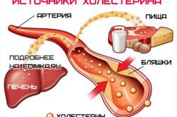 Источники холестирина