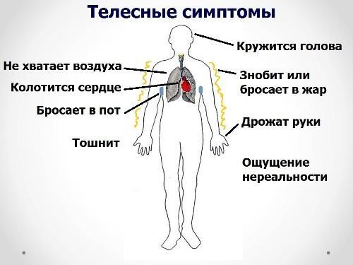 Лечение вегето-сосудистой дистонии у мужчин
